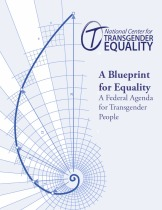 Download the Blueprint for Equality